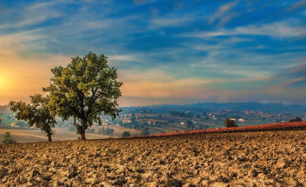 5 Borghi da vedere in Umbria viaggio nella Terra del Sagrantino, umbria, montefalco, umbria tourism, italia, centro italia, sagrantino, vino sagrantino, visit umbria, spello, assisi, trevi, bevagna